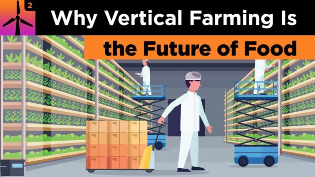 Why Vertical Farming is the Future of Food