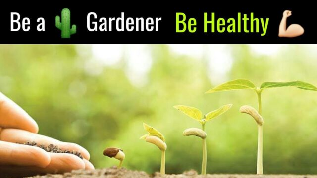 How Gardening Change your Health Status? || Health benefits of Gardening