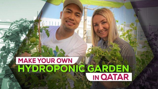 Hydroponic gardening in Qatar