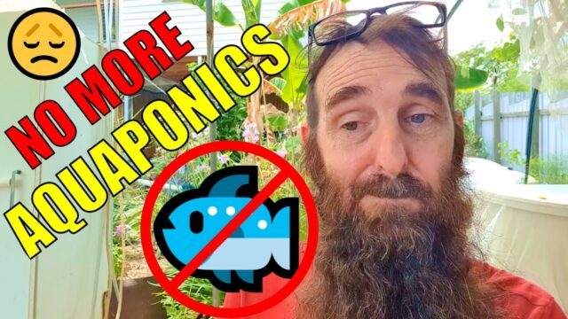 No More Aquaponics…….. 😥