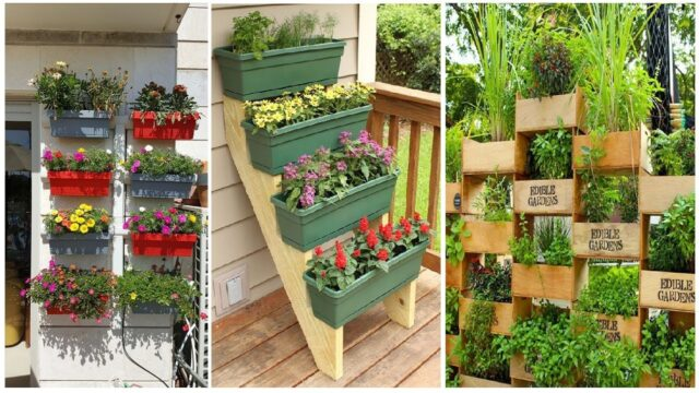 50 Genius Vertical Gardening Ideas For Small Gardens | DIY Garden
