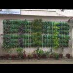 Vertical gardening best idea with plastic bottles.