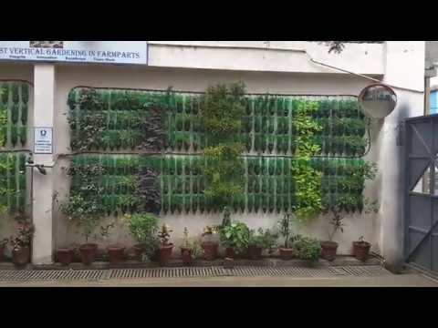 Vertical gardening best idea with plastic bottles.