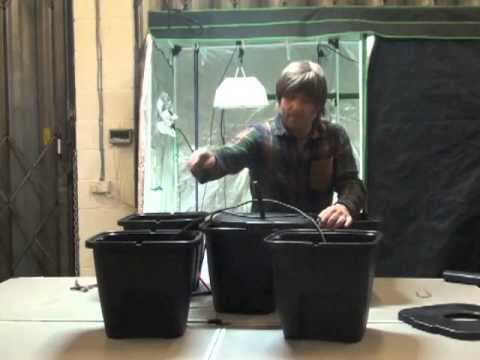 Plant-!T Aeros 4 Pot Hydroponic Growing System – Bill and Bens