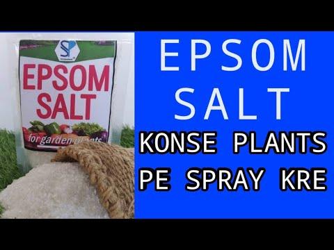 KONSE PLANTS PE EPSOM SALT SPRAY/SOIL APPLICATION Kre