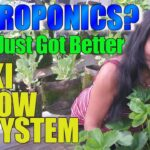 THE BEST HYDROPONIC SYSTEM IN THE WORLD