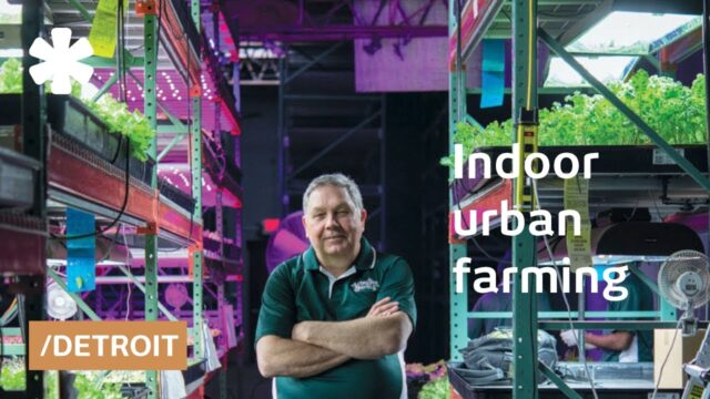 Detroit retiree grows organic food in a transformed warehouse