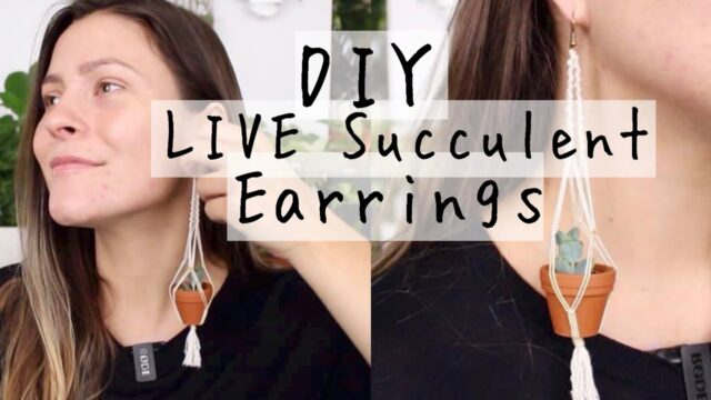 DIY Live Succulent Macrame Earrings! | Macrame Plant Hanging Earrings How To!