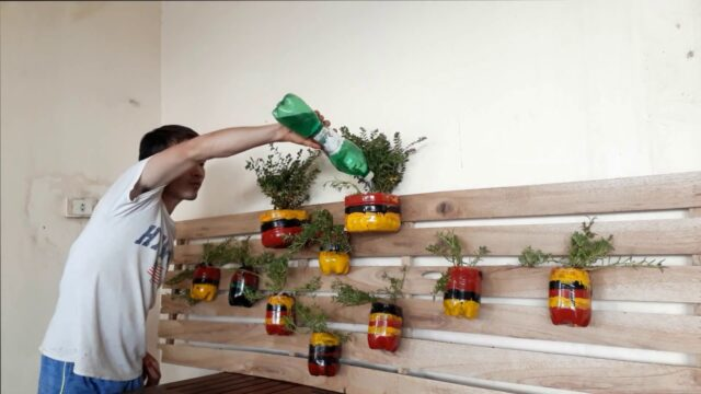 Creative DIY Pallet Planter Ideas for Spring – recycling plastic bottles – pots with plastic bottles