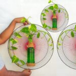 How to Grow Money tree/ glass bottle wall planters / Money plant Growing Ideas