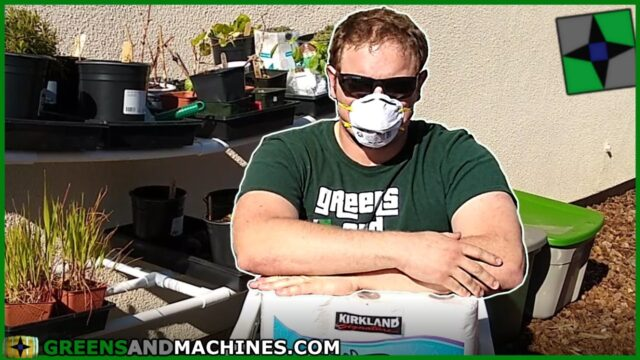 Plants for the Pandemic – Vegetable Gardening Under Quarantine | Container Gardening