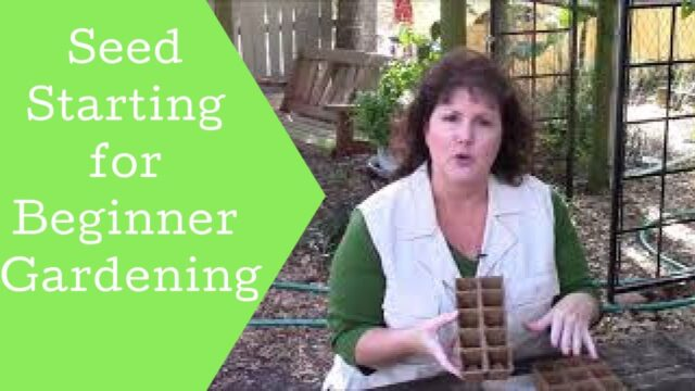 Gardening 101 with kids| Starting Seeds for Beginners| Homeschool curriculum| Garden ideas
