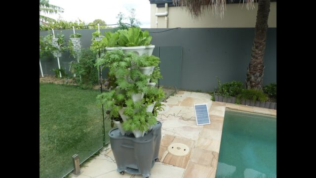 Easiest Home Hydroponic Vertical Garden Kit Runs on Solar Power