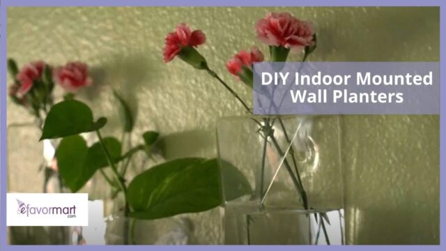 DIY Indoor Mounted Wall Planters | Home Décor Tutorial | eFavormart.com