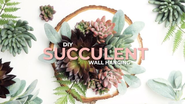 DIY Artificial Succulent Wall Hanging
