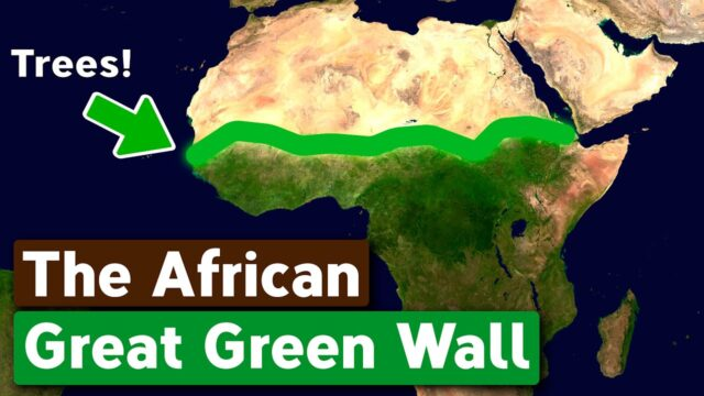 Why Africa is Building The Great Green Wall