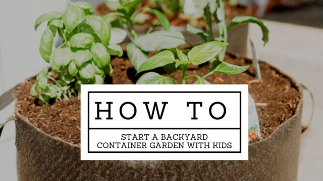 GARDENING for beginners | How to Plant a Container Garden With Your Kids