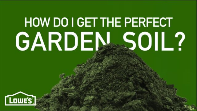 How Do I Get The Perfect Garden Soil? | Gardening Basics w/ William Moss