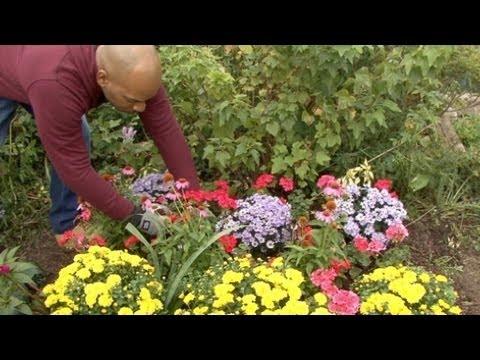 Planting Fall Garden Vegetables & Flowers
