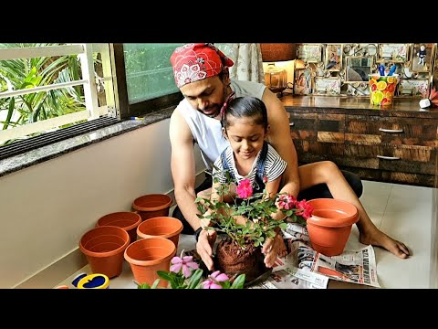 Gardening with kids | My window garden creation! | Snails, worms, mud and masti!