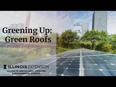 Green Infrastructure Series- Green Roofs (Session 2)