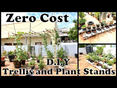 Zero Cost Construction of Trellis and Plant stand || By School of Gardening||