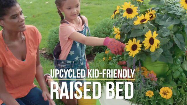 Kid-Friendly Raised Bed