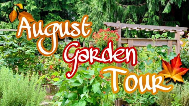 August Garden Tour // Learn To Grow