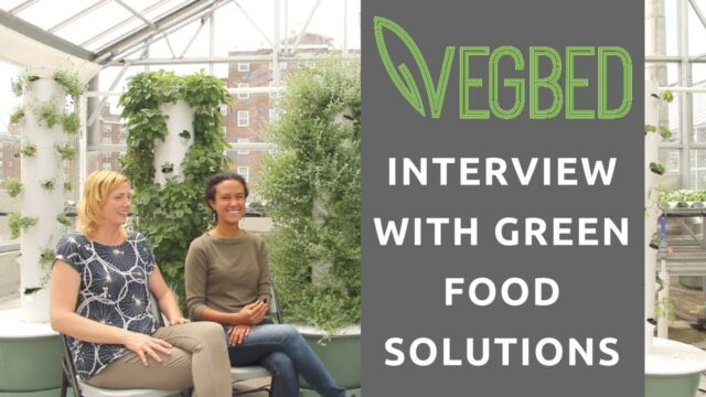 ROOFTOP VERTICAL TOWER GARDENS! | Episode 2 – Green Food Solutions Interview