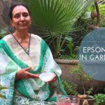 EPSOM SALT IN GARDENING | BENEFITS OF EPSOM IN GARDENING, PLANTS and SOIL |