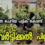 VERTICAL GARDEN ഈ രീതിയിൽ ചിലവില്ലാതെ നിർമ്മിക്കാം    vertical garden pillar   Gardening Malayalam  
