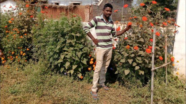 School Garden || बागवानी