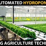 FULLY AUTOMATED HYDROPONIC FARM | Modern Hydroponic Farming | Amazing Agriculture Technology