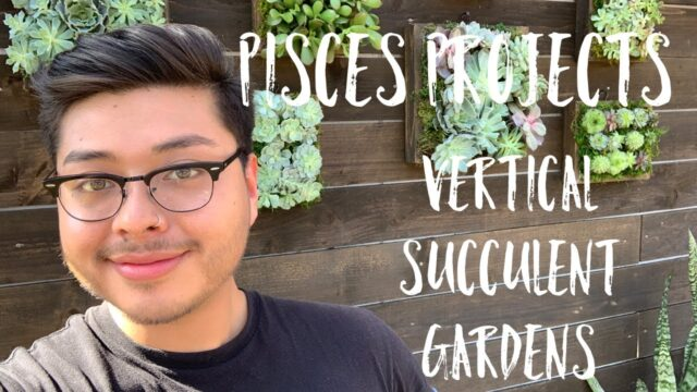 PISCES PROJECTS | VERTICAL SUCCULENT GARDENS