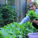 My Vegetable Garden At Home / Nutritious Vegetable Soup Cooking