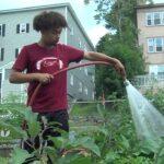 Benefits of a Community Garden