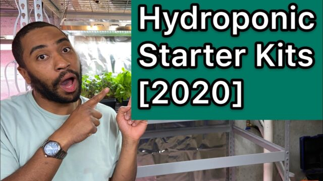 Hydroponics starter kits