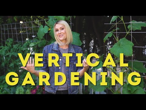 The advantages of vertical gardening!