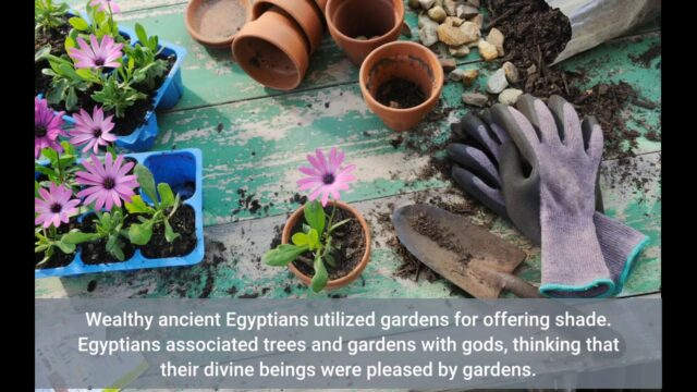 Some Known Details About The National Gardening Association
