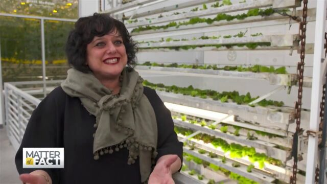 Vertical Harvest  How A Farm Provides Upward Mobility for People with Disabilities