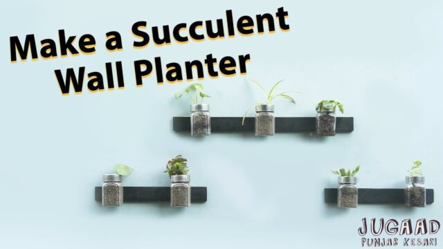 Make a Succulent Wall Planter