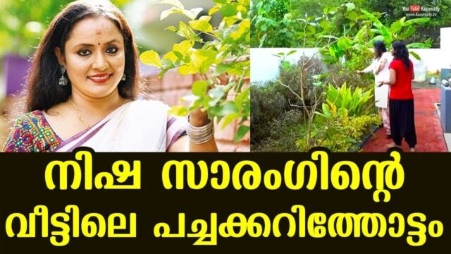 Vegetable garden at Nisha Sarang's home | Day With A Star