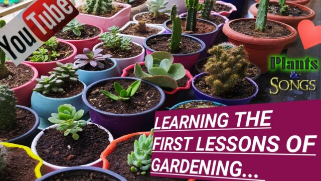 Learning gardening lessons… 2008