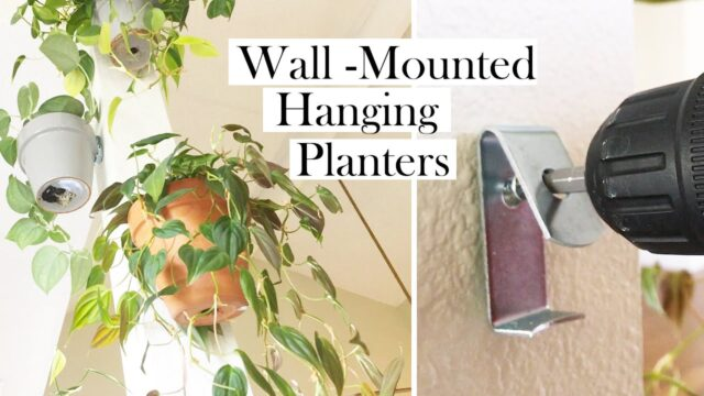Plant Styling: Wall-Mounted Planters