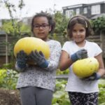 Growing food with the Big Soup Share   Campaign for School Gardening   Royal Horticultural Society