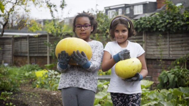 Growing food with the Big Soup Share | Campaign for School Gardening | Royal Horticultural Society