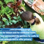 The Single Strategy To Use For The National Gardening Association