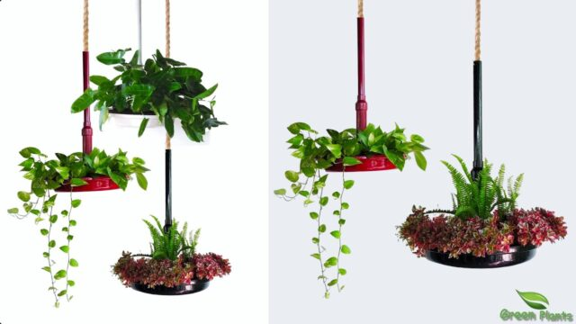 Rich Look Hanging Garden Planters Using Available Materials | Hanging Planter Idea//GREEN PLANTS