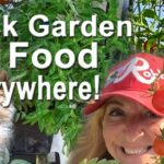 Container Garden TIPS Vegetable Gardening on Deck Patio Watermelon Herbs Tomatoes Totes & Pot Plants