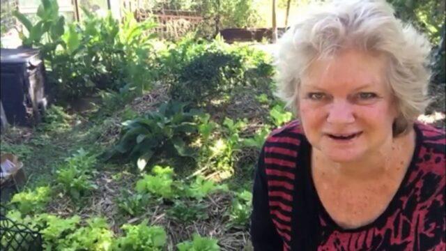 Intro to e-organic gardening course